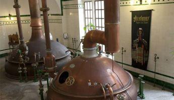 Altenburger Brauerei erhält erneut IFS-Zertifizierung für höchste Standards